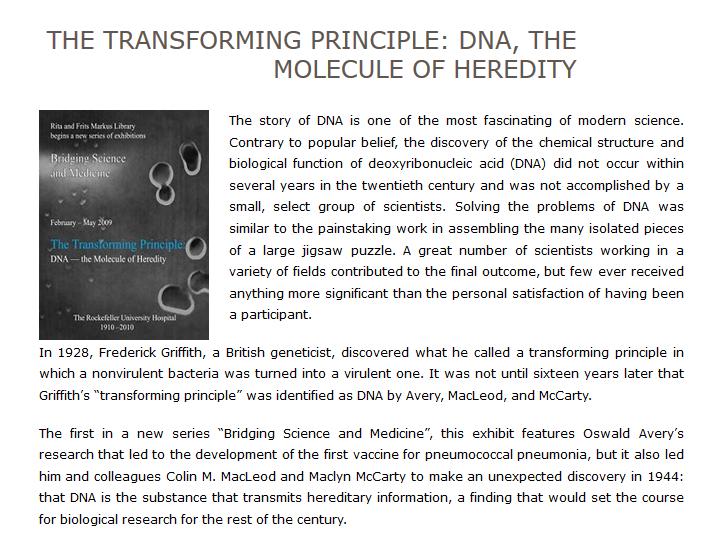 Transforming the Principle: