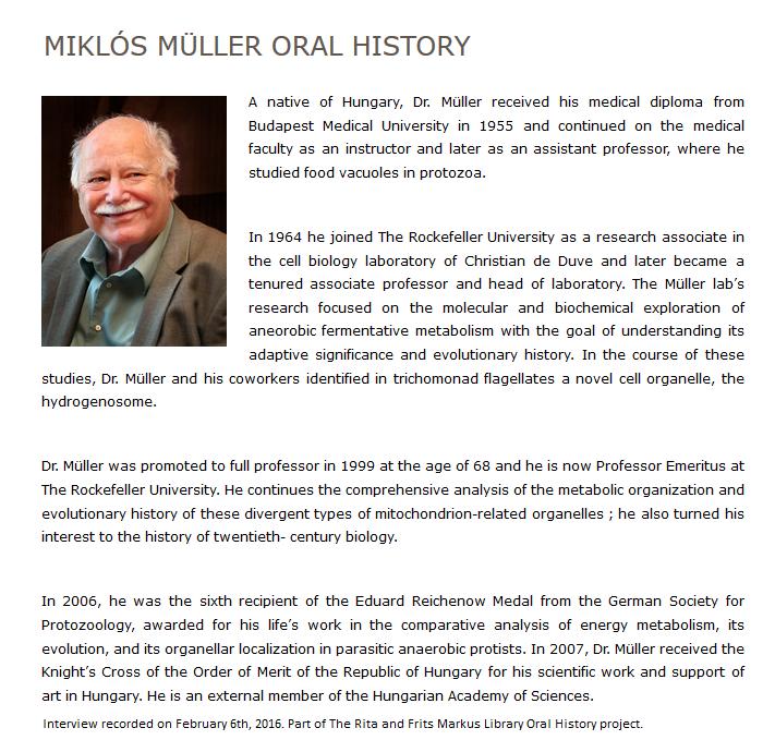 Miklos_Muller