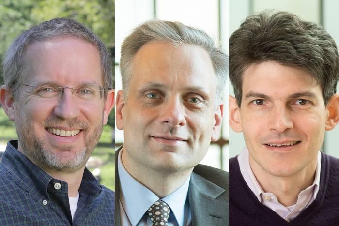 Brady, Freiwald, and Marraffini