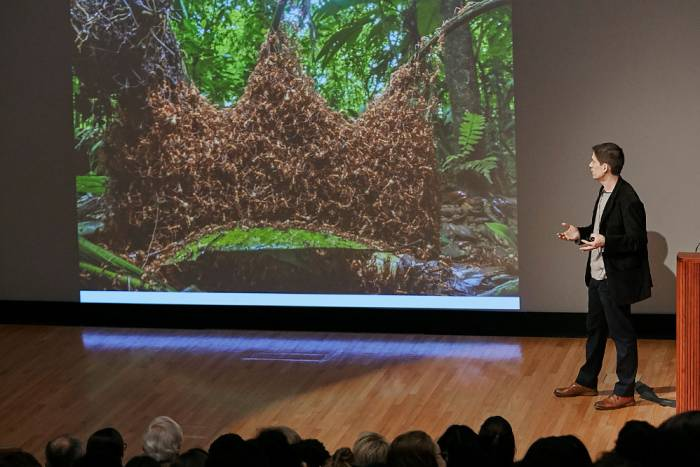 Kronauer shows the architectural feats of army ants