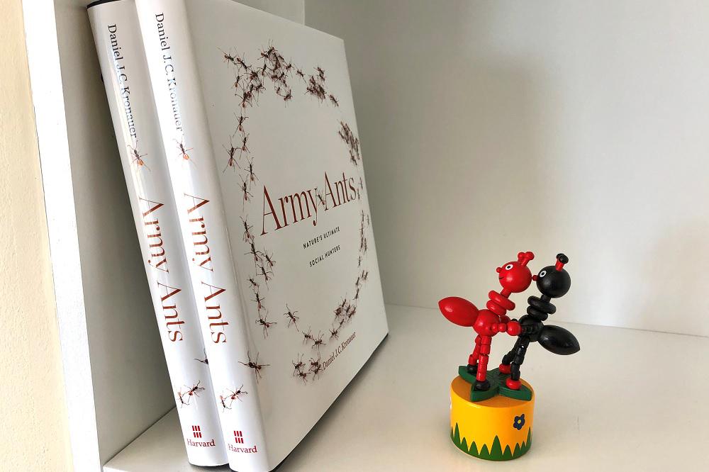 Daniel Kronauer's new book on bookshelf
