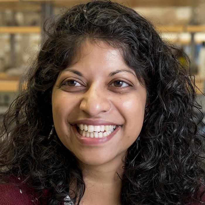 Priya Rajasethupathy, M.D., Ph.D. (Rockefeller)