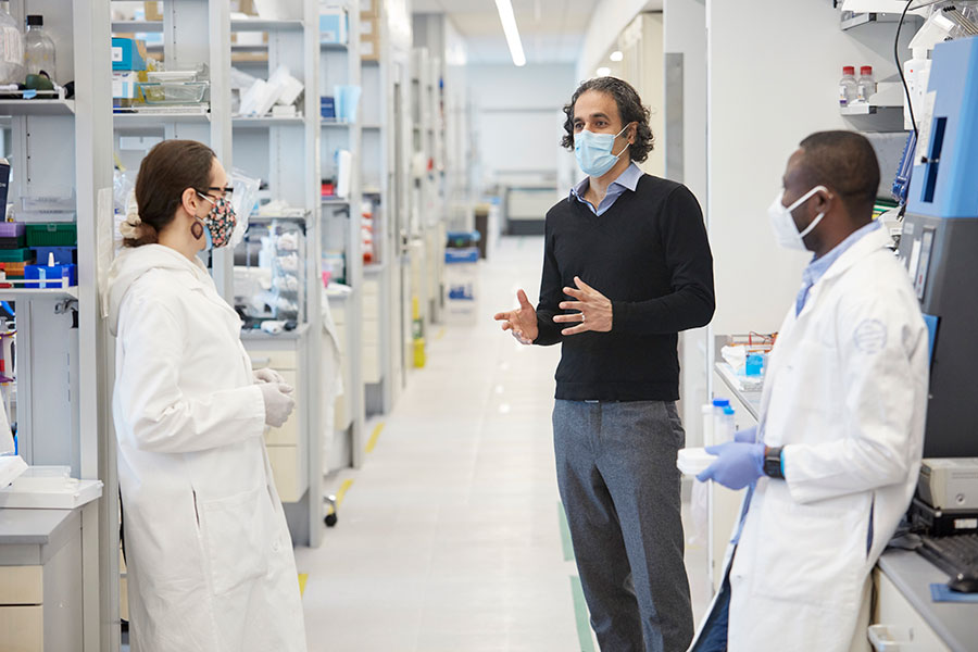Image of Sohail Tavazoie collaborating with lab members
