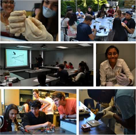 The Rockefeller University » Summer Neuroscience Program (SNP)
