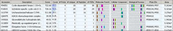 Proteome Discoverer screenshot