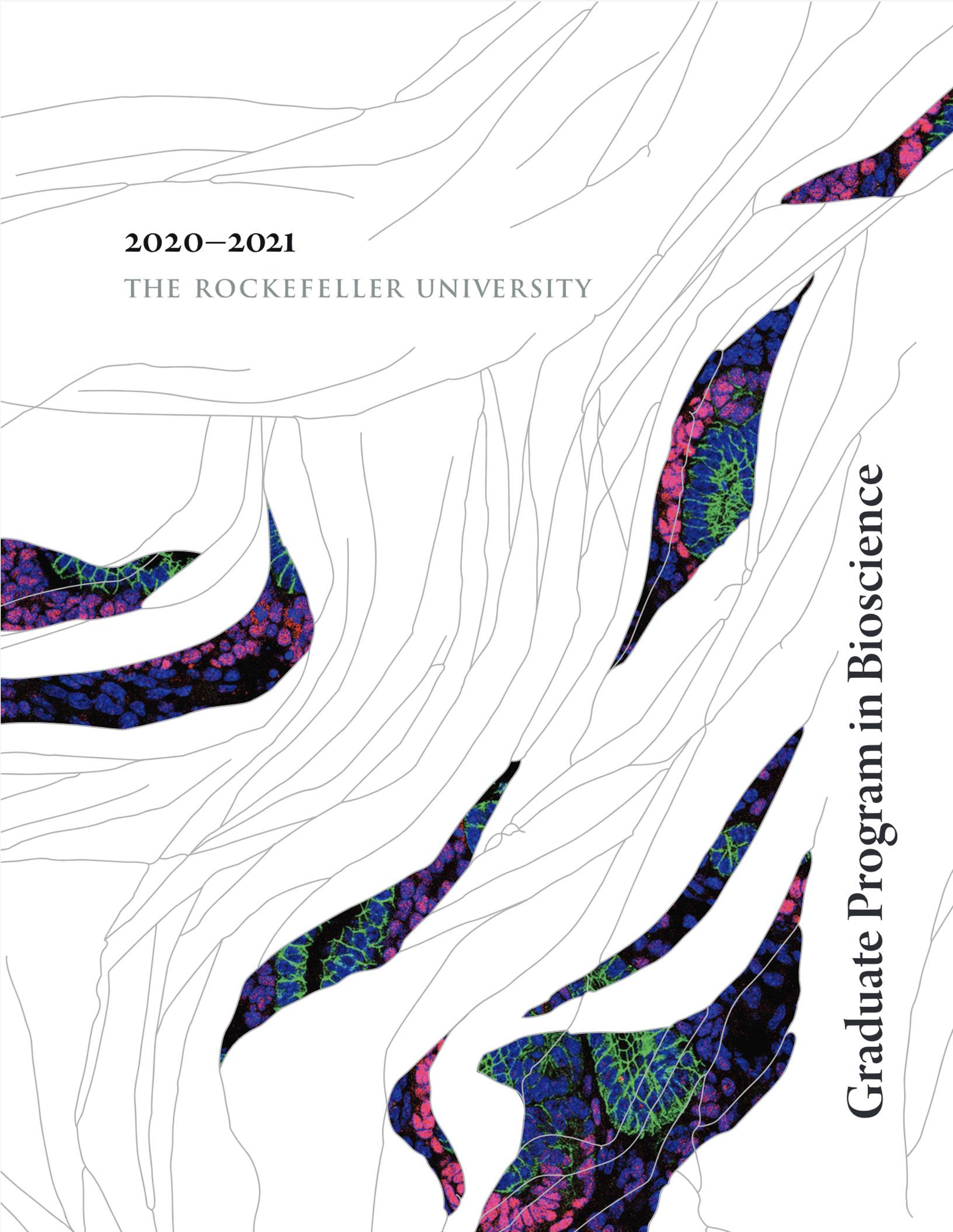 Graduate Program Cover