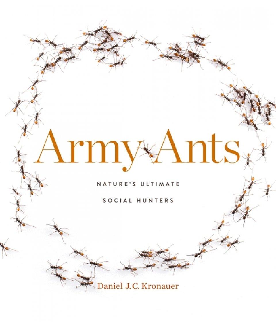 Daniel Kronauer (2020) Army Ants: Nature's Ultimate Social Hunters. Harvard University Press.