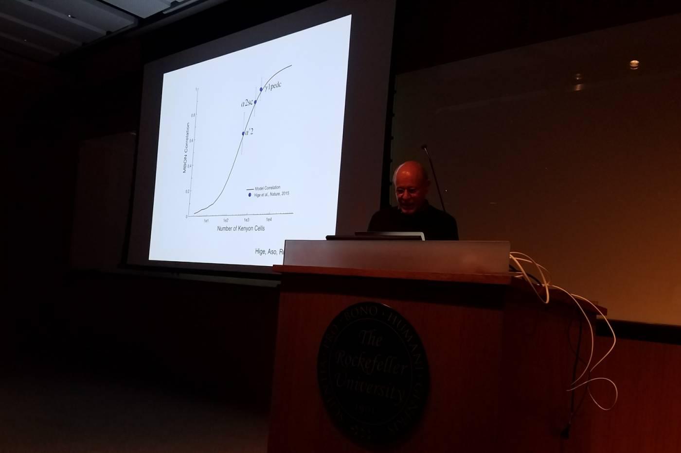 Kavli Sense 2 Synapse talk