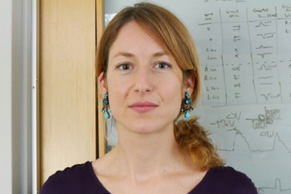 Lisa Fenk, Ph.D.