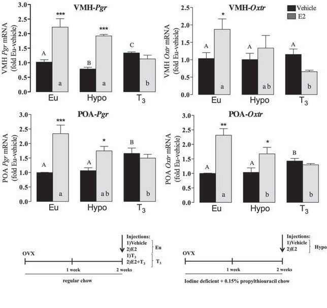 Graphs of VMH and POA