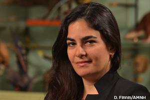 Ana Luz Porzecanski, Ph.D.