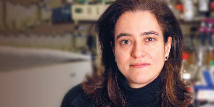 F. Nina Papavasiliou, Ph.D.