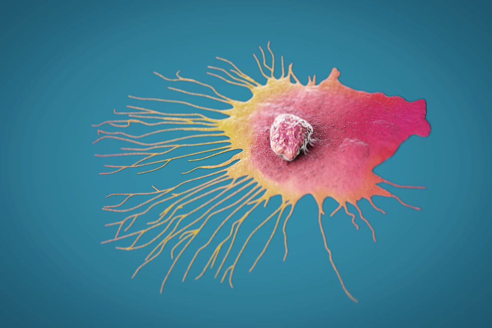Scientific illustration of a migrating breast cancer cell